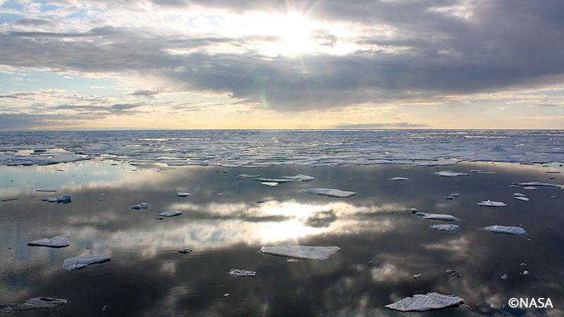 Arctic sea ice Chukchi Sea