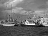 Nautical reunion