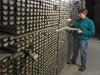 Assistant Curator Ellen Roosen examines cores in the WHOI Seafloor Samples Laboratory.