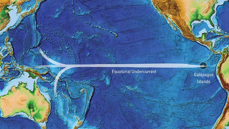 Equatorial Undercurrent illustration
