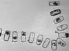 Diatoms under ice