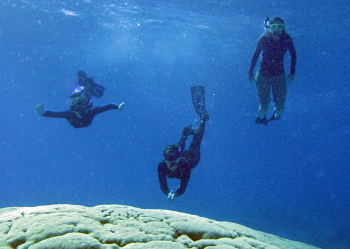 MIT-WHOI Joint Program graduate students Alice Alpert (left) and Liz Drenkard (center), and U.S. Fish and Wildlife Service representative Kelsie Ernsberger (right), snorkel above a large coral at an atoll in the central equatorial Pacific in 2012.