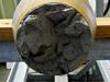 Close up view of retrieved long core sediment core.