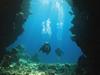 divers undewater