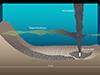 Deepwater Horizon oil
