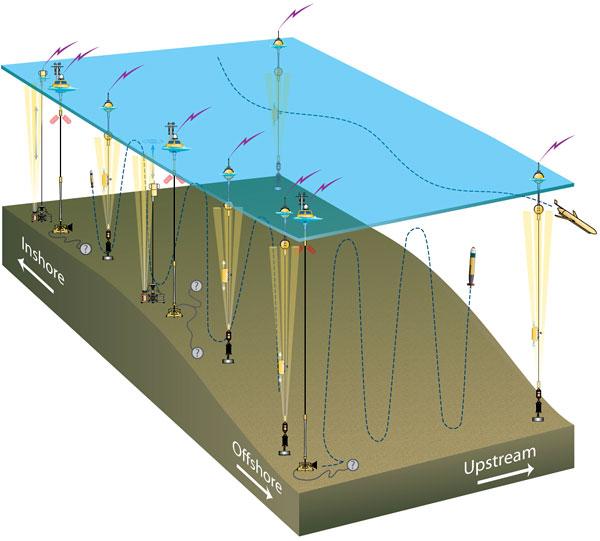Schematic diagram of the Pioneer Array.
