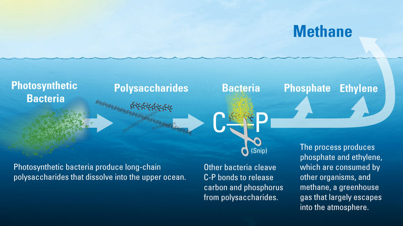methane illustration