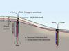 diagram of Gast/Elgar/Raubenheimer microbe expt.