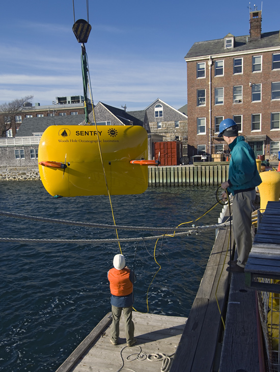 new AUV Sentry is lowered into the water for shallow tests
