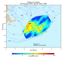 Alexandrium surface live counts. R/V Oceanus April 28 - May 5, 2008