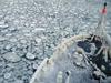 Sea Ice in the Bering Sea