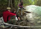 Fraser River: Running Free