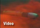 REMUS: Testing sensors using dye