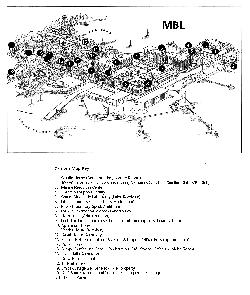 MBL Campus Map