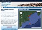 Marine Animal Identification Network