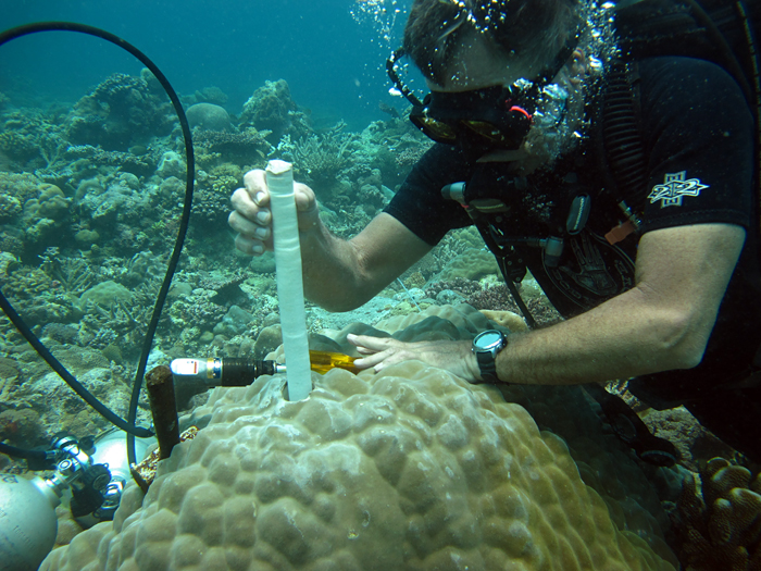 WHOI scientist Pat Lohmann removes a core drilled from a living coral during a recent field expedition to Palau, a remote coral reef archipelago in the far western Pacific.