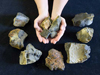 Rocks recovered by Camper in the Arctic ocean.