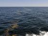 Ocean frontal boundary