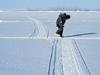 ice tracks shift
