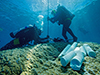 Recovering coral cores in Micronesia