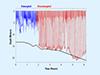 Whale dive data