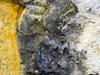 tricolor rock from Gakkel Ridge