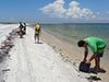 Beachcombing for Deepwater Horizon
