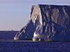 Ice berg at dawn