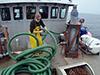 Plankton pump