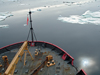 Healy through sea ice