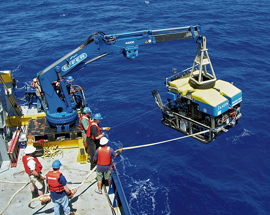 Jason is lowered in the Pacific Ocean
