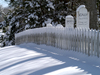 Snow covered WHOI pet cemetery.