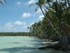 PIPA nikumaroro atoll