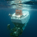 alvin underwater