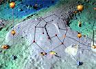 Observatory, Mooring & Buoy Information