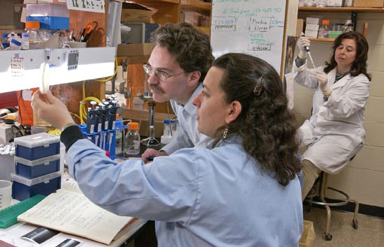WHOI biologists Sibel Karchner, Mark Hahn, and Diana Franks (front to back) found that small molecular differences in a critical protein in two kinds of birds made one species much more sensitive to an environmental contaminant, dioxin.