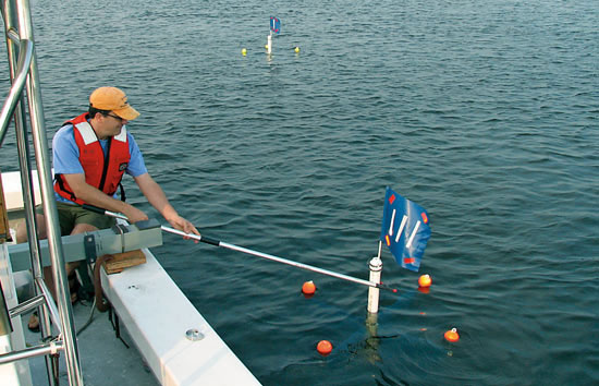 The surface drifters tracked the movements of surface waters in the estuary over 24-hour periods to test the effect of tidal changes on microbial populations.