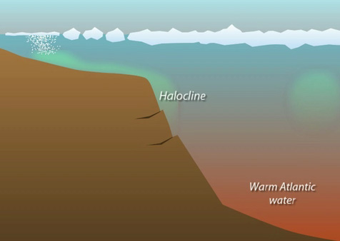 Layers in the Arctic Ocean