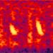 Seismic Studies Capture Whale Calls