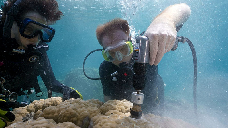 coral drilling