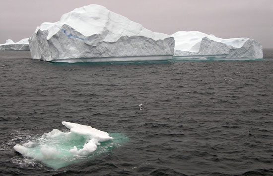 Icebergs hinder scientists' abilty to study currents off the southeast coast of Greenland that are important to ocean circulation and climate, including a surface current hugging the coastline that brings cold, fresh Arctic water into the North Atlantic.