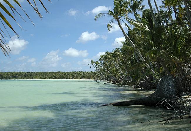coral atoll of Nikumaroro