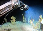 Imaging & Sampling Deep-water Habitats