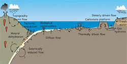 ub-seafloor fluid flow systems in geological, biological, and hydrographic environments.