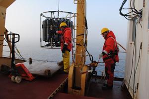 Plankton dynamics in the Beaufort Sea
