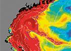 Harmful Algae & Red Tide Research