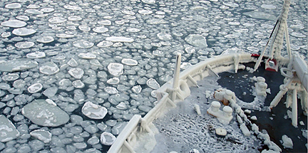 pancake ice in the Arctic's Chukchi Sea