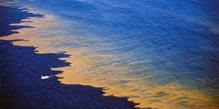 Hamrful Algae and Red Tide