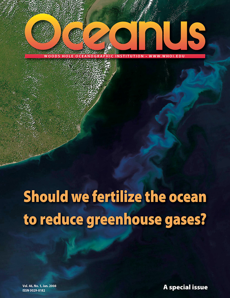 Should We Fertilize the Ocean to Reduce Greenhouse Gases?