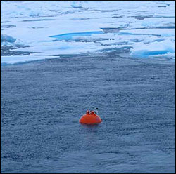 The WHOI-A top flotation package reaching the surface after being deployed beneath the ice for one year.